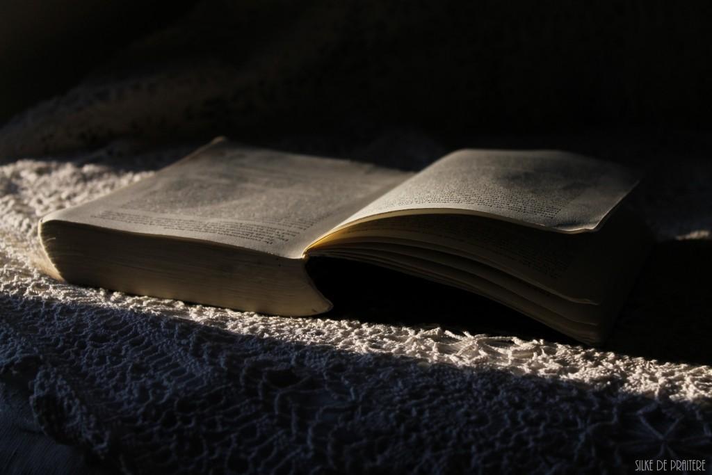 Leestips #2   |   De boeken van Michael Robotham & Before I go to sleep