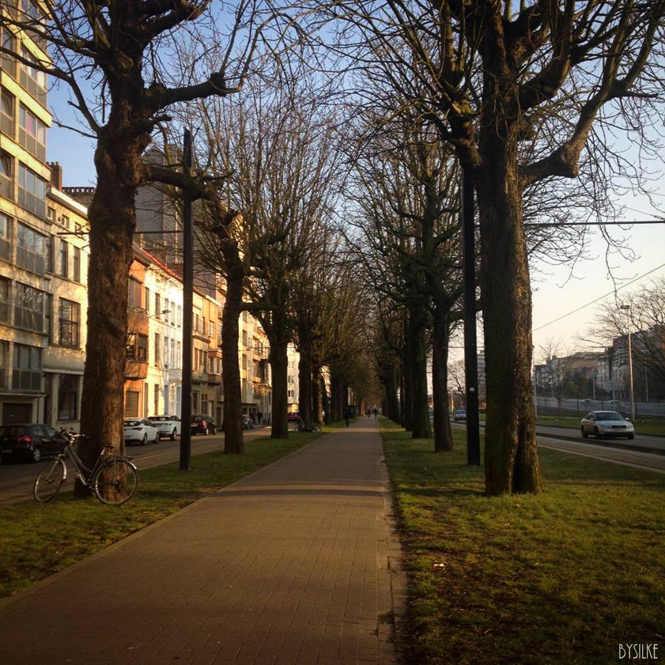 Gent Zuidpark