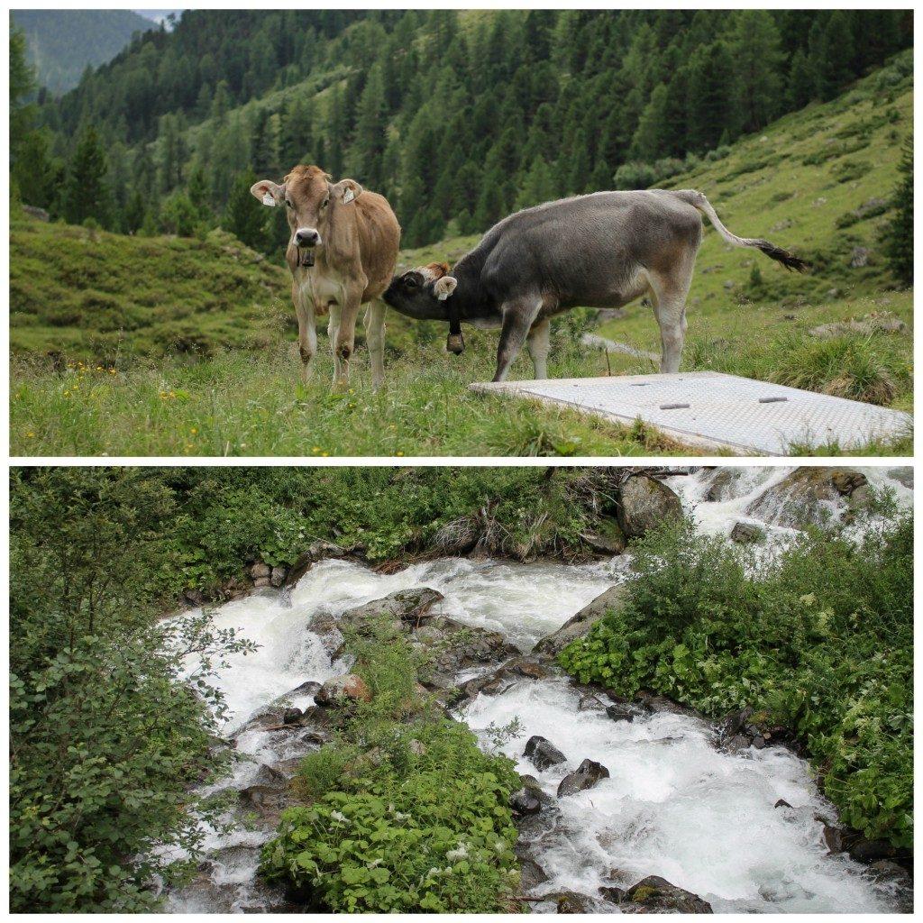 Reizen  |  Oostenrijk  |  25e huwelijksverjaardag vieren
