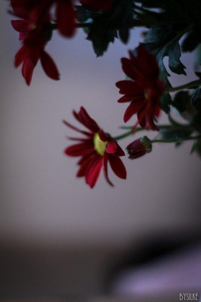 herfstbloemen in huis