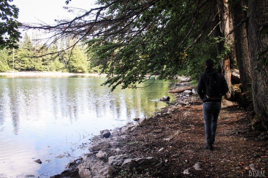 Zabojsko Jezero nature