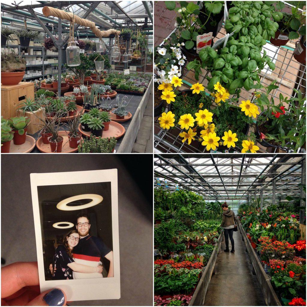 Van Eeckhout Planten Gent